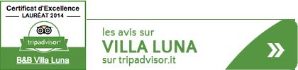 Btn Tripadvisor